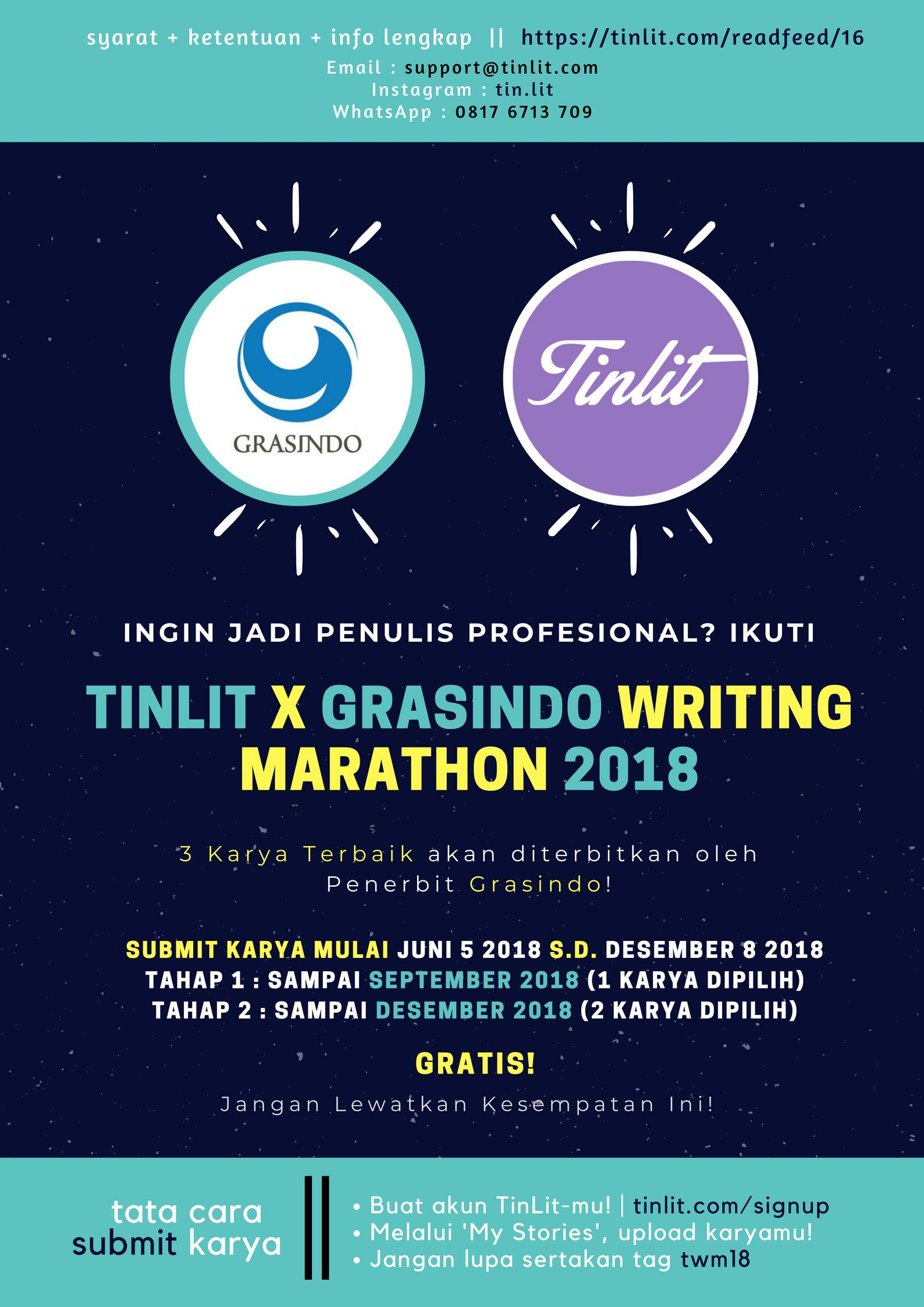 TinLit Novel Writing Marathon 2018